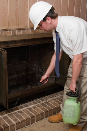Exterminator_Home_Fireplace